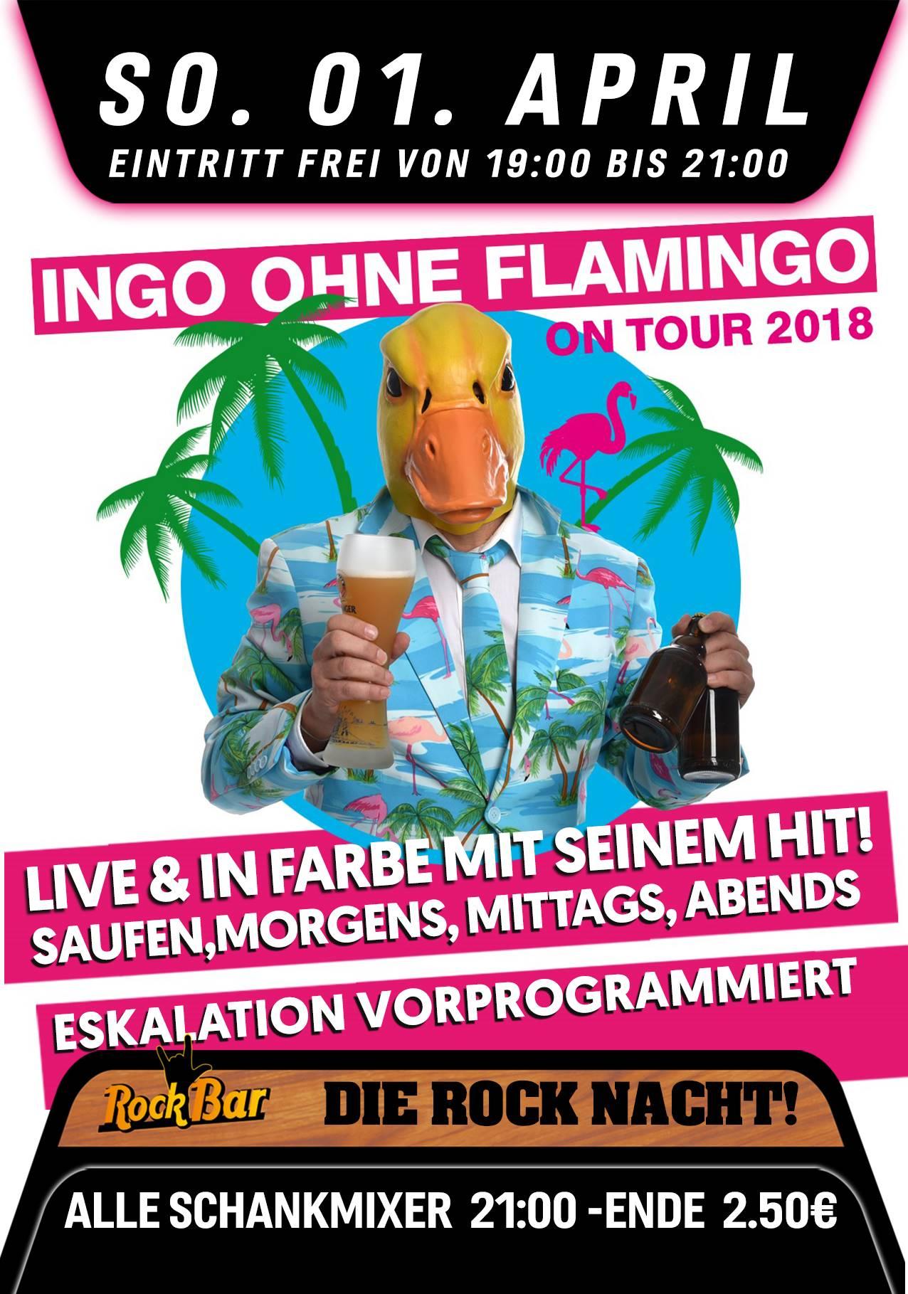 Ingo ohne Flamingo Live!